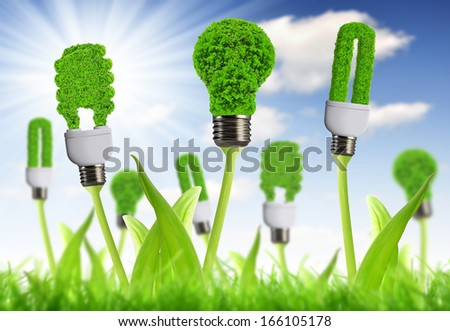 eco energy bulb with sunny sky - Green energy concepts - stock photo