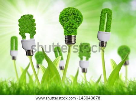eco energy bulbs - stock photo