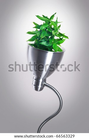 eco energy saving lamp - stock photo