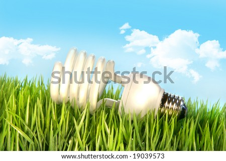 Eco-friendly light bulb lying in the grass against blue sky - stock photo