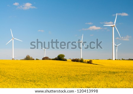 Eco-friendly wind turbines between yellow canola fields in Germany