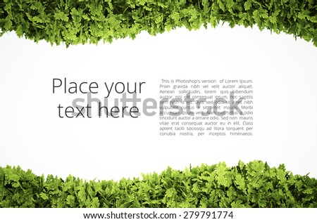 Eco text frame with simple text pattern - clipping path of green leaf shape included - stock photo
