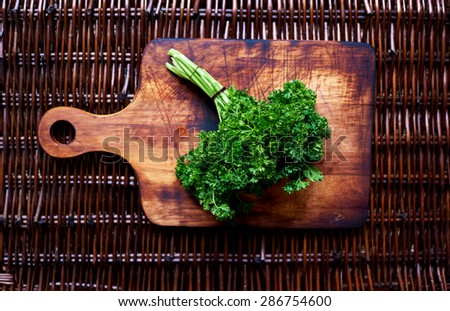ecological clean bunch of parsley plucked from the greenhouse, fresh vegetables, copy space area - stock photo