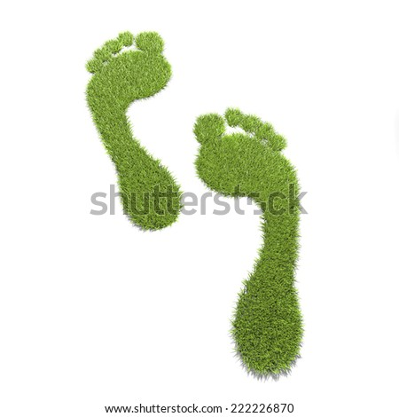 ecological footprint  Footprint from grass on white ground  - stock photo