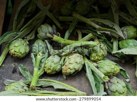 Ecological fresh artichokes in a market. - stock photo