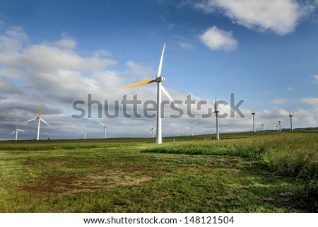 Ecological wind turbines