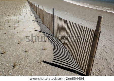 ecological works at the seaside to strengthen of sandy soil - stock photo