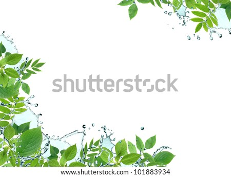 Ecology concept. Border made from green leaves and splashing water - stock photo
