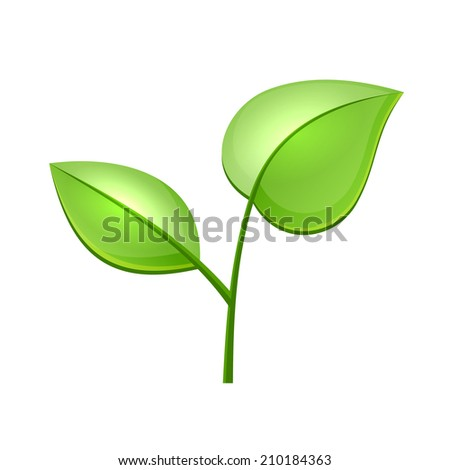 Ecology Concept Icon with Glossy Green Leaves  illustration