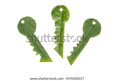 Ecology concept. Key to eco solutions. Keys made of green leaf.