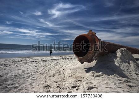 ecology of the sea coast - stock photo