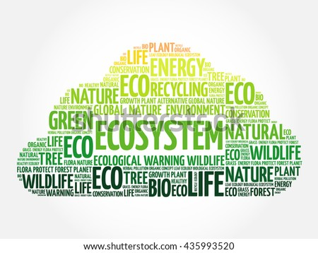 Ecosystem word cloud, conceptual green ecology background - stock photo