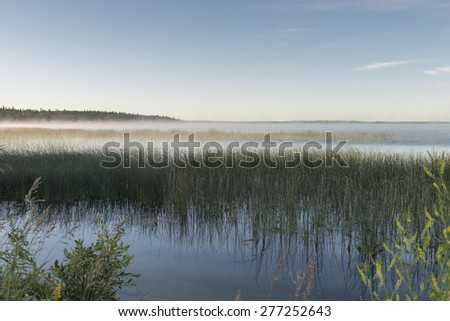 Edge of Marshland, Riding Mountain National Park, Manitoba, Canada
