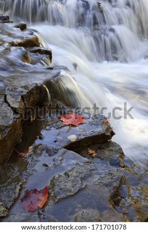Edge of the Falls -- A couple red maple leaves rest on the edge of Ocqueoc Falls in Northern Michigan. - stock photo