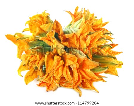 Edible pumpkin flowers over white background - stock photo