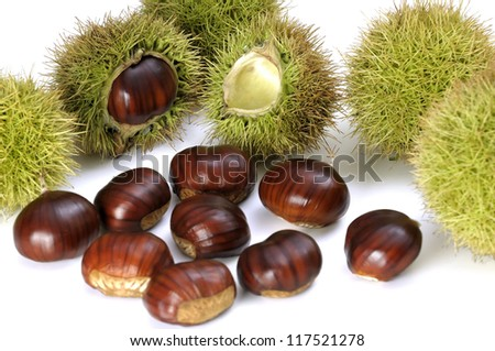 Edible ripe chestnuts on the white background - stock photo