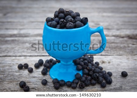 Edible salal berries, Gaultheria shallon, native to western North America. - stock photo