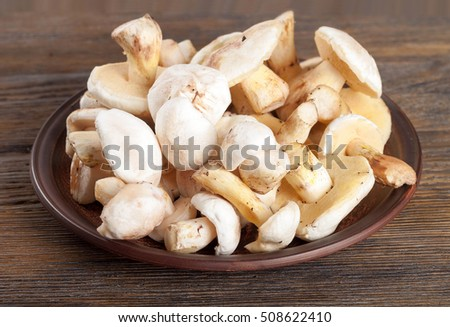 Edible wild mushrooms on a wooden background. Forest cleaned mushrooms in a clay plate.