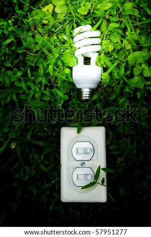 effiicient light bulb and switch in green grass - stock photo