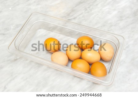 Egg collection - stock photo