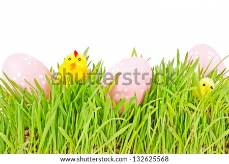 egg easter and chicks in a grass Isolated on white