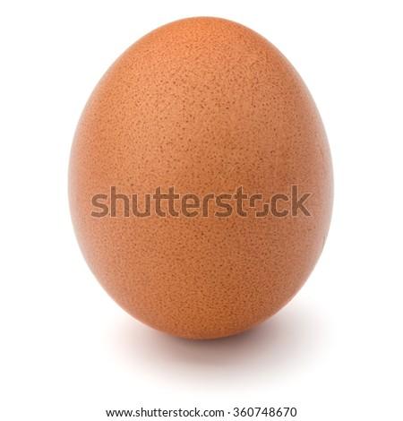 Egg isolated on white background cutout - stock photo