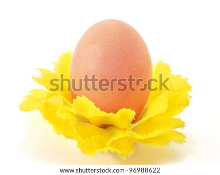Egg one in decorative yellow flower - stock photo