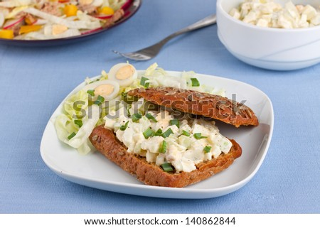 Egg Salad Sandwich With Plate Of Salads On Background