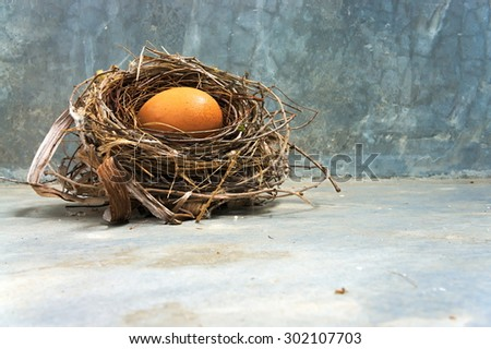 egg with bird's nest on the concrete floor in the morning.