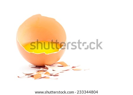 Egg yolk in the shell isolated on white background - stock photo