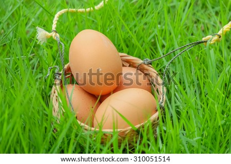 eggs and egg basket and a basket of bamboo strips