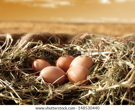 eggs and sky  - stock photo