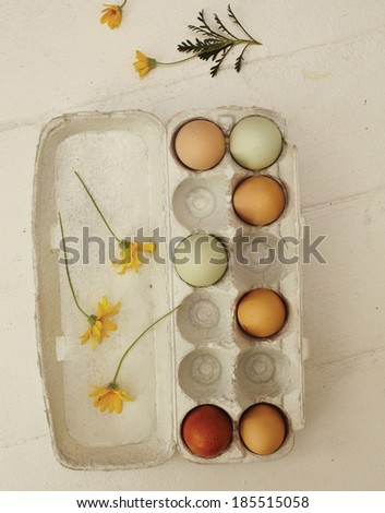 Eggs (Clipping Path) - stock photo