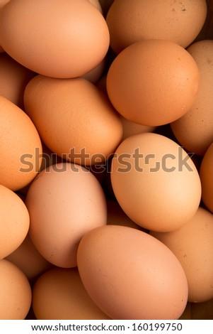 Eggs close-up - stock photo