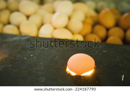 Eggs for sale in market - stock photo