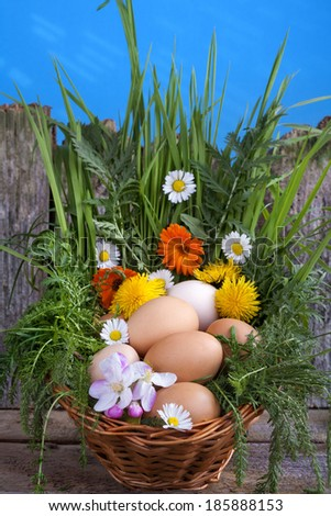 Eggs in a basket with spring plants and flowers