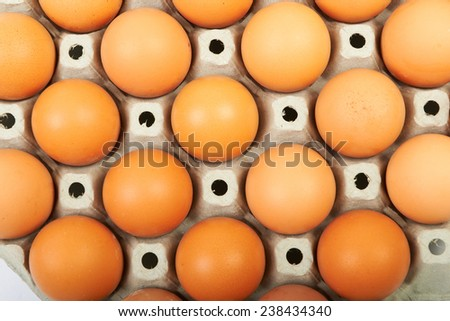 Eggs in a cardboard box  - stock photo