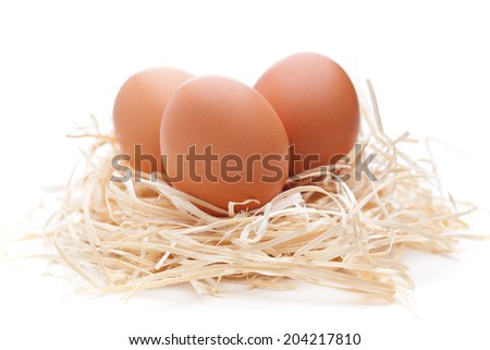 Eggs in a nest isolated on white background - stock photo