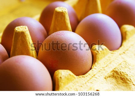 Eggs in box, with focus on central egg - stock photo
