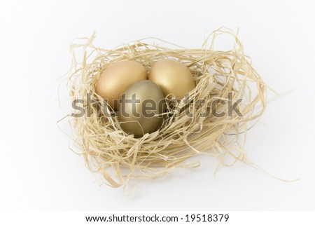Eggs in nest