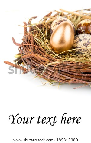Eggs in nest isolated on white background with copyspace - stock photo
