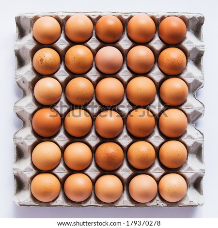 Eggs in panel - stock photo