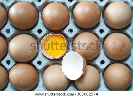 Eggs in panel, Close up - stock photo