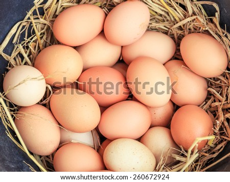 eggs in the basket,eggs of hen in nature - stock photo