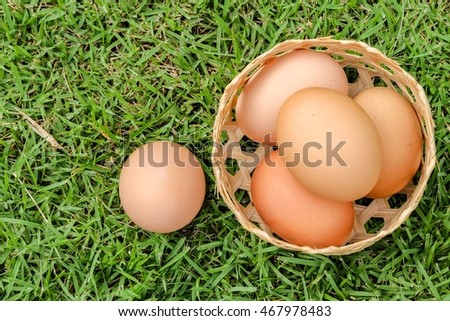 eggs on basket and green grass