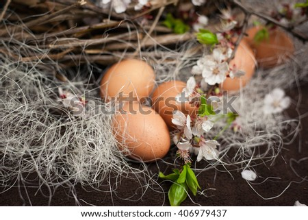 Eggs on hay and flowering branches