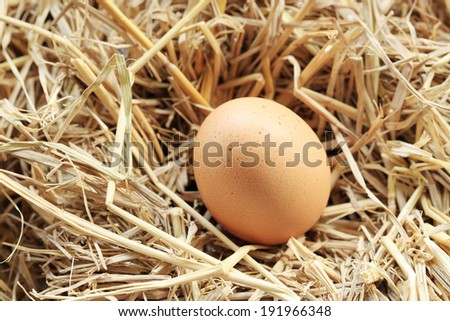 Eggs on the straw