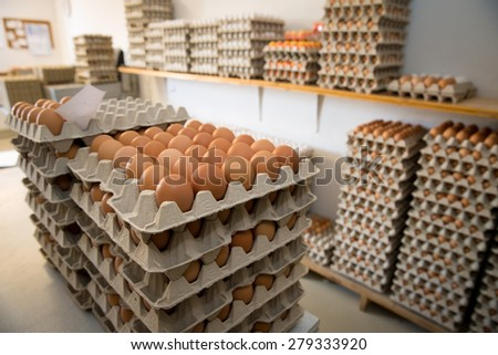 eggs packed in cartons and stacked in a storage room before they are shipped to the market - stock photo