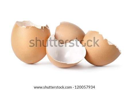 Eggs shell isolated on a white background - stock photo