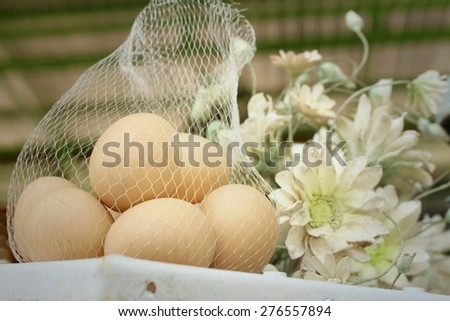 Eggs with beautiful flowers in a garden - stock photo